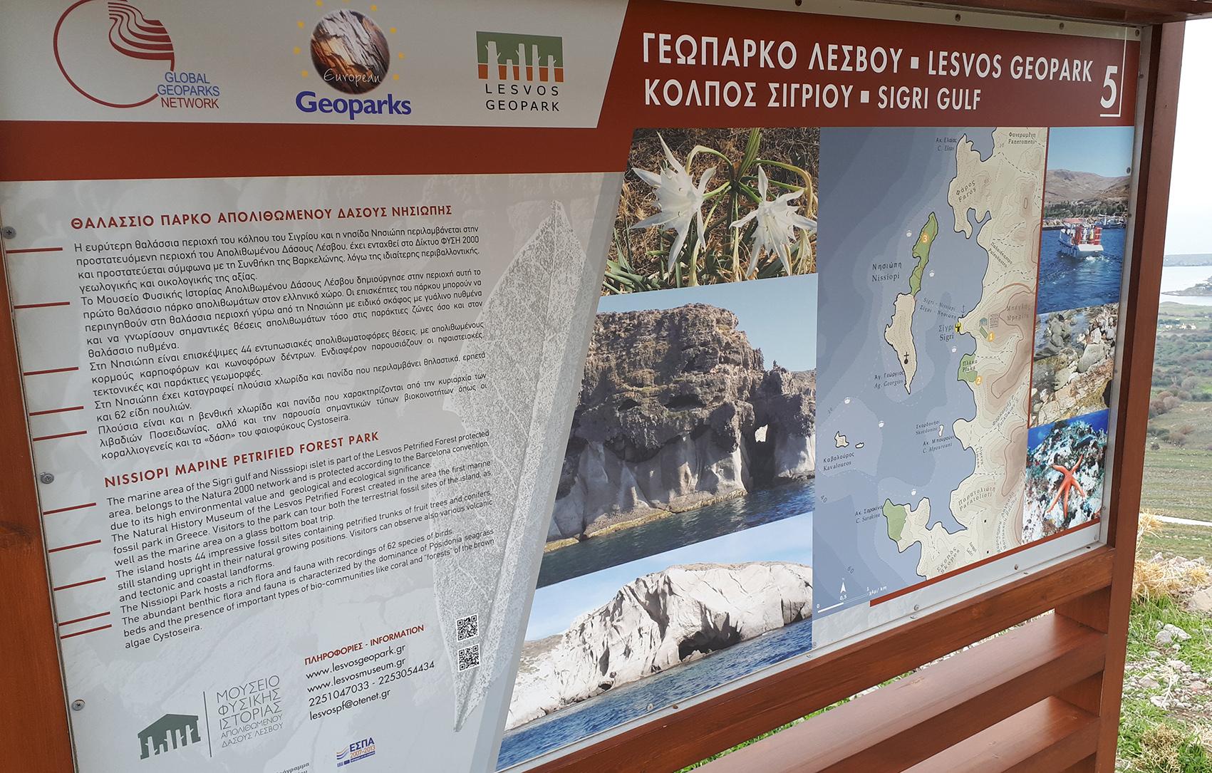 Lesbos Unesco Globala Geopark – förstenad skog och flyktingkris