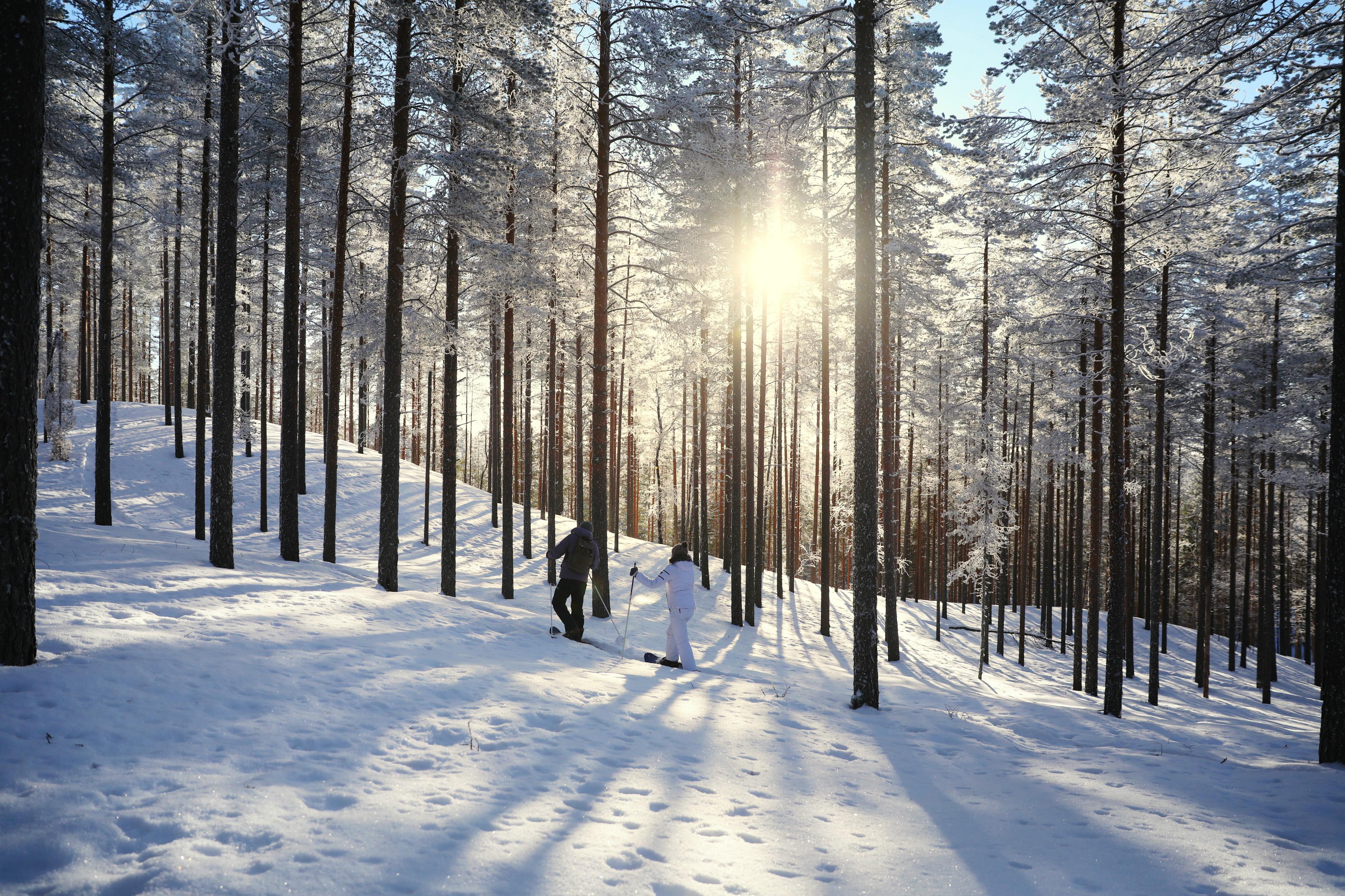 Hallå där Vesa Krökki – chef för Rokua Geopark, Finland