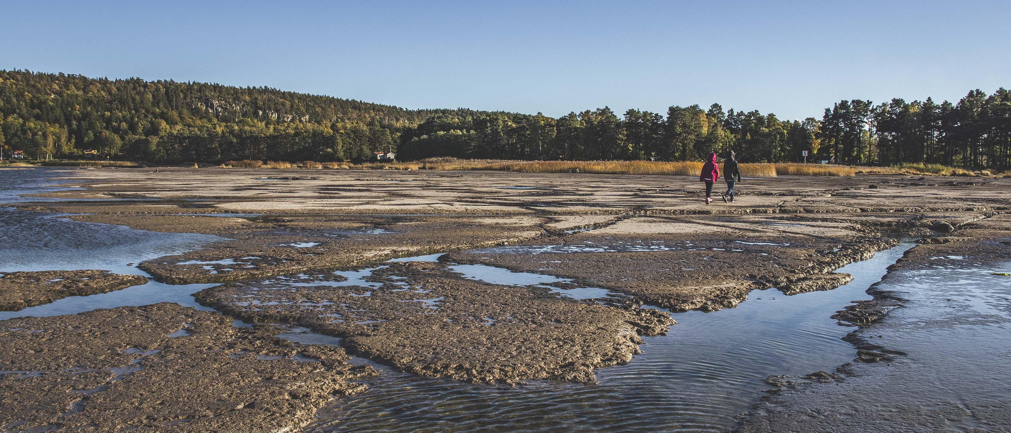 Geoparken önskar samarbete med naturpedagog