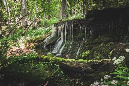 Vattenfall vid Västerplana storängs naturreservat