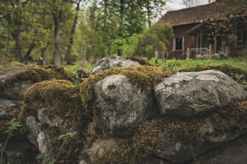 Stenmur vid ödetorpet