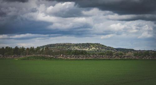 Borgundaberget sett från Dala