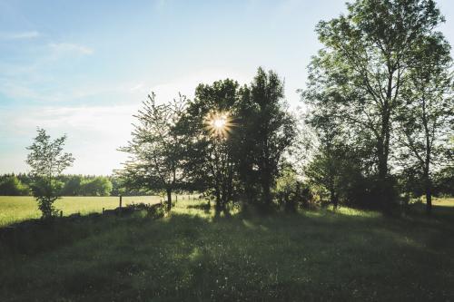 Österplana vall och heds naturreservat