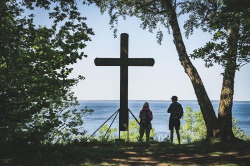 Hastings kors vid Västerplana storängs naturreservat
